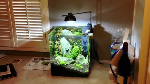 Classic Nano Desktop Shrimp Tank