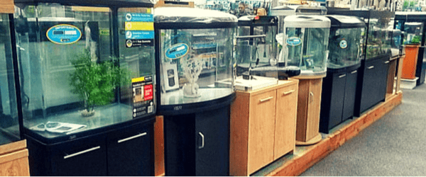How to choose an aquarium tank size for Fish tank sizes