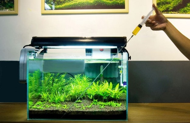 Different Fertilizing Methods Used In Aquascaping