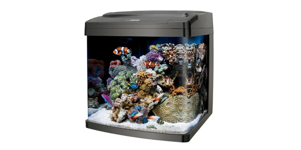 Coralife BioCube 29 Gallon Aquarium