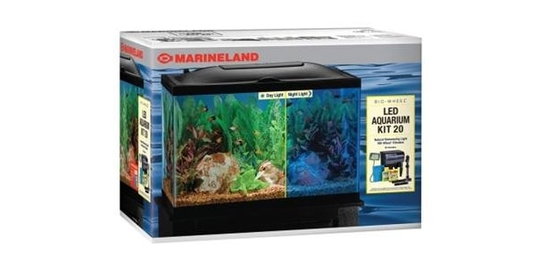 Best 29 Gallon Aquariums | The Aquarium Guide