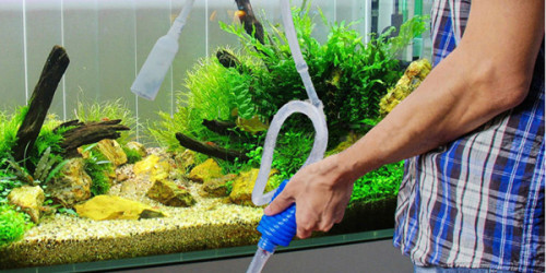 Aquarium Siphone and Hose