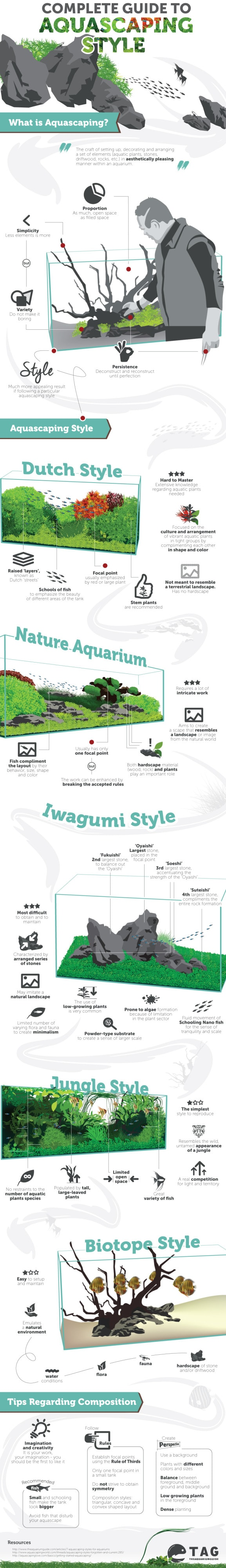 aquascaping infographic