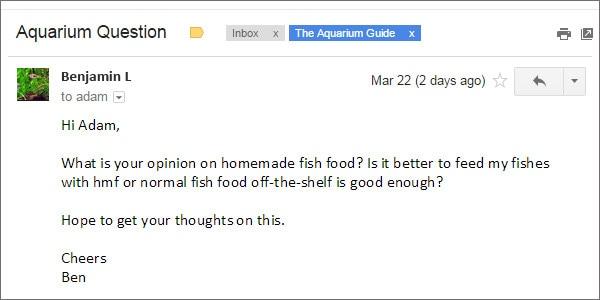 Home food for aquarium fishes pictures.