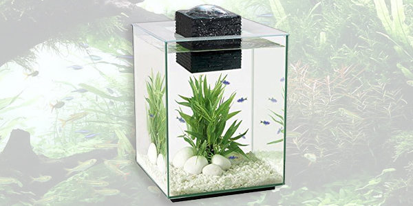 Fluval Chi II Aquarium Set 5 Gallon