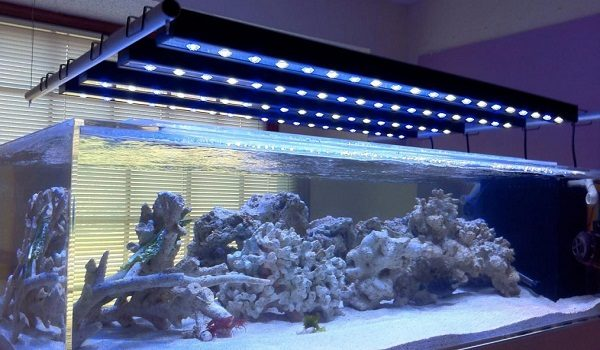 Beamswork Led Aquarium Light The Aquarium Guide