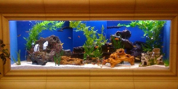 Acrylic Aquarium 2