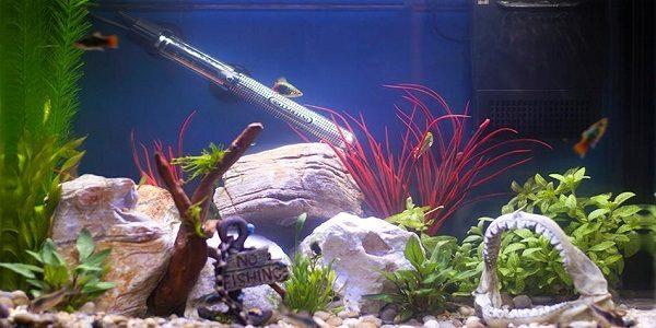 Aquarium Heater 2
