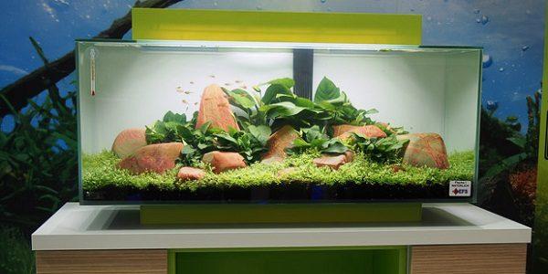 Fluval Aquariums